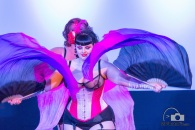 The Dallas School Of Burlesque Dancers